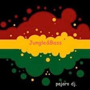 jungle & bass