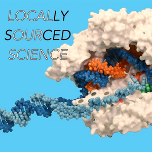 Episode 8. Synthetic biology and CRISPR-Cas9 discussed with Dr. Guillaume Lambert