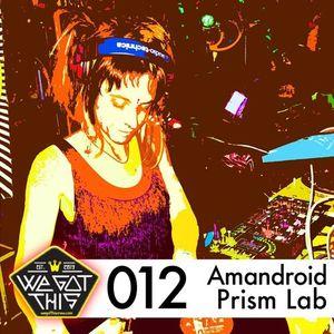 WeGotThis Mix Series 012 Amandroid & Prism Lab