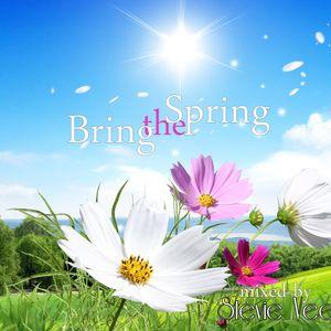 Stevie Vee - Bring the Spring (part.1)