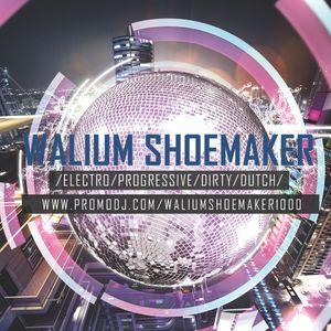 Mix Session @D.E.M Radio & DJ CONTEST HOVORANY 2014 - Mixed by Walium Shoemaker