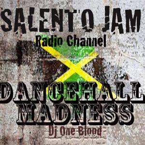 """DANCEHALL MADNESS""-Dj One Blood-(Sab 25/06/2011)"