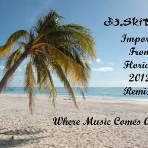 DJ.SKITCHIE - Importrd from Florida 2012 Remix