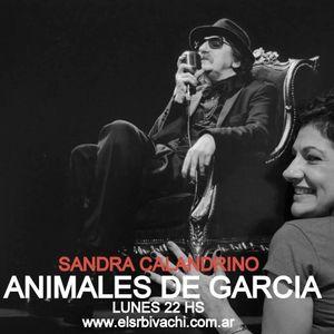 ANIMALES DE GARCIA, EPISODIO 66, CHARLY SOLISTA DE LOS 80, 13/11/2017