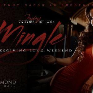 Mingle 2k14 Promo CD