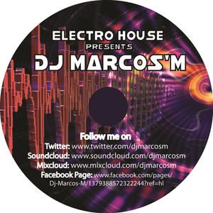 Electro House Summer Festival Mix