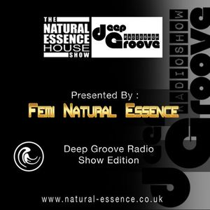 The Natural Essence House Show - Episode 147 - DeepGroove Radio Show