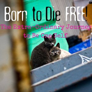 B2DF #16: the Extra-Ordinary Journey to Be One Self