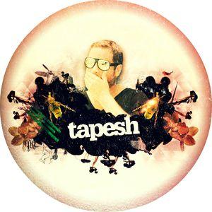 Tapesh - Pacha London Podcast #20 [08.13]
