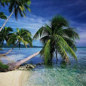 THIS IS TROPICAL 2010 MINIMIX