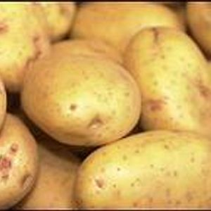 Patates viudes