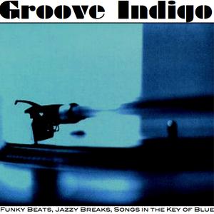 DJ Ray Velasquez presents Groove Indigo Live @ Mono+Mono 3.10.12