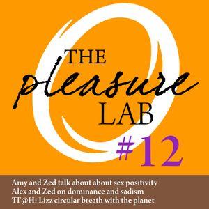Pleasure Lab #12