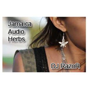 DJ RazoR (Irie Ites Soundsystem Kassel) - Jamaican Audio Herbs (10-2011)