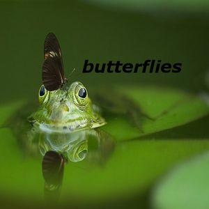 butterflies-dance by the sea
