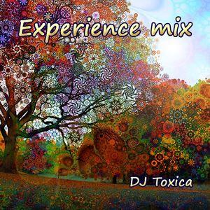 DJ Toxica - Experience (mix 2015)