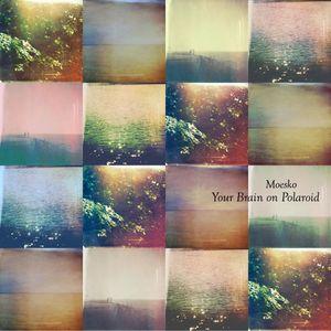 Your Brain on Polaroid