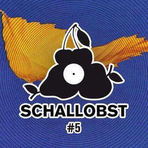 Schallobst #05 - New Order World (2017-08-20 @ 674.fm)