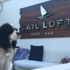 august 10th 2hrs live set @Sail Loft surf bar
