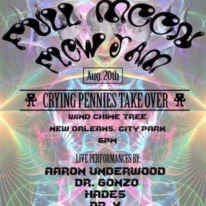 Aaron Underwood live @ Flow Jam : Crying Pennies Takeover August 20 2017 New Orleans City Park