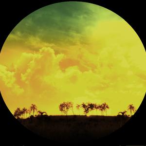 2012 Sunlight [Steve Perez]