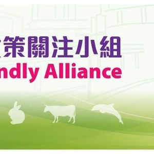 'Animal Friendly Alliance' Hong Kong - in conversation with April Leung