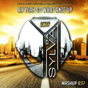 Mop ft Busta Rhymes Vs Will Sparks Vs Andy F - Ah Yeah So What Ante Up (Da Sylva Mashup)