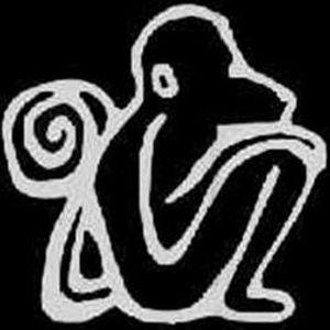 the new monkey 19/1/2002 part 2