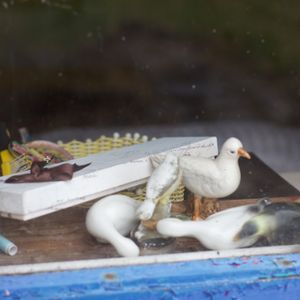 I'm talking to artists Mark Lawlor and Siobhan Harton about their exhibition, Seagulls in Cavan
