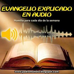 Evangelio explicado en audio homilía jueves semana XXIII tiempo ordinario