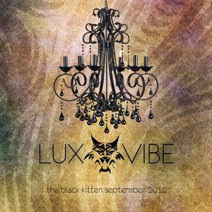 the black kitten  - LUX VIBE