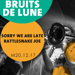 Bruits de Lune - 20 décembre 2017 - Rattlesnake Joe + Sorry We Are Late