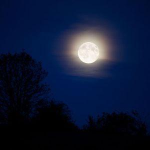 Moonlight@WarsawMix