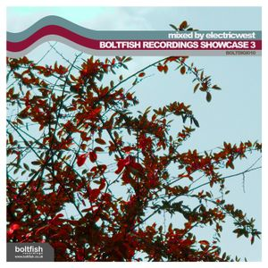 Boltfish Recordings Showcase #3 (mixed by Electricwest)