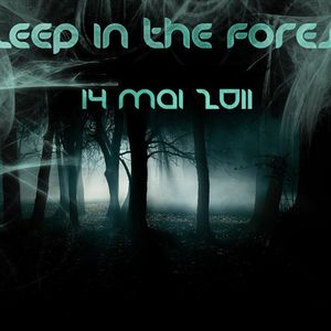 Dj Laloutre Live @ Sleep In The Forest 2011 (1st Edition)