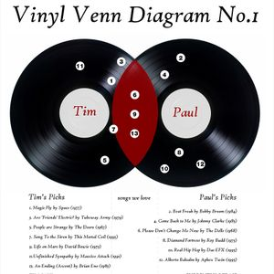 #37 Vinyl Venn Diagram 1