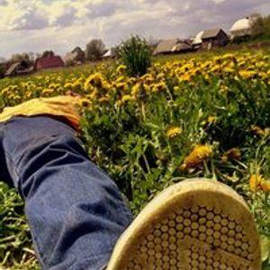 Happy Springtime Soundwave Selection Part.1