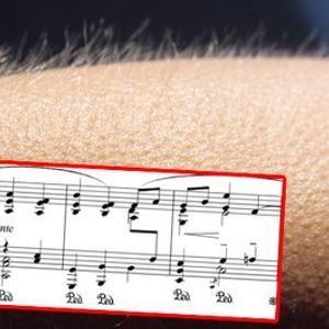 Pythagoras' Trousers Episode #423 - Musical goosebumps, Facebook hacking & wrinkly fingers