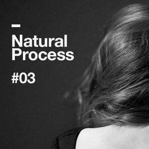 Natural Process #03
