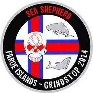 For 50 abused Pilot Whales (Faroe-Island,Denmark)- Für 50 misshandelte Pilotwale (Faroer-Inseln)