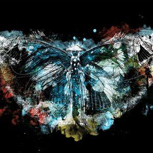 De Nachtvlinder