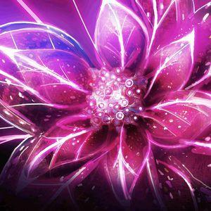 Dj Spectral Cat -Thousand Stars