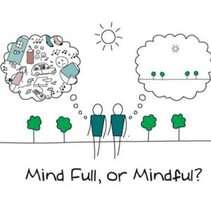 Mindfulness and how to apply it in every day life.