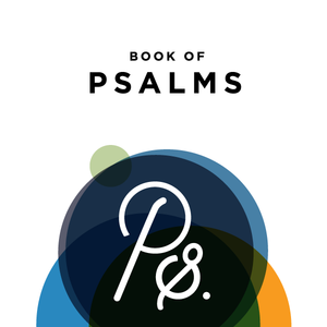 07.09.17 // the Summer of Psalms, part 6 - Rescue // Steve Mickel