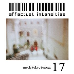 Affectual Intensities 17