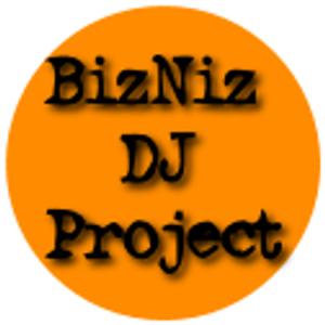 MilleR - BizNiz DJ Project 1013B