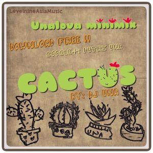 UNALOVA Minimix CACTUS ( LIVE from RP )