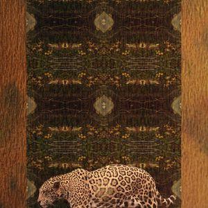 Night Of The Jaguar 6 Mix