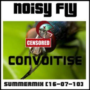 Noisy Fly & convoitise - Summer Mix [16-07-10] (part 1)