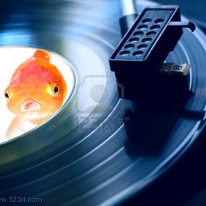 thewisegoldfish presents... acid radio [archive 2]